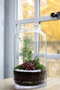Terrarium végétal Paysager - Modèle HD