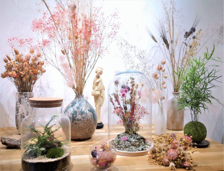 Présentation Fleurs séchées