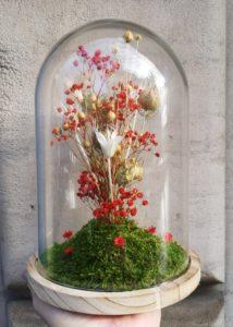 Fleurs séchées rouges sous cloche de verre